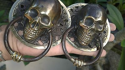 2 round large SKULL head ring pull Handle BRASS  day of the dead cabinet door B 5