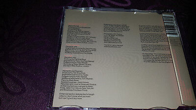 Pet Shop Boys / I dont know what you want but i cant give it any more - Maxi CD 2