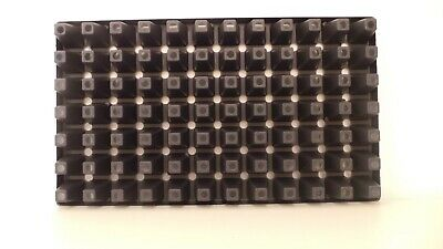 Bellis perennis 500 Samen Gänseblümchen Saatgut 001387 Tausendschön
