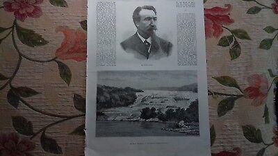 1877 Stich 3 / Neuseeland / Eugene Smits