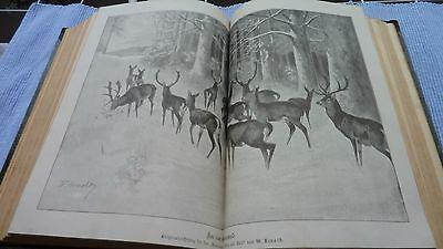 Deutsche Jäger Zeitung,Deutsche Forst Zeitung,Das Schießwesen , Jan-März 1897 2