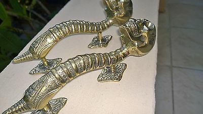 "2 small SKULL handle DOOR PULL spine BRASS old vintage style Polished 8 "" B 6"