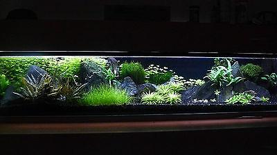 15 KG NATURAL BLACK AQUARIUM GRAVEL 2-5mm AQUASCAPING IWAGUMI IDEAL FOR PLANTS 11