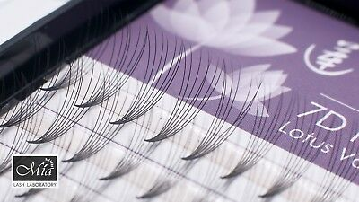 Lotus 7D Fan Lashes Premade Volume Fan Pre-fan Semi Permanent Eyelash Extensions 2