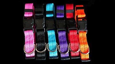 Dog Collar Nylon Adjustable Collars 4 sizes 6 colours UK Pet Accessories 3