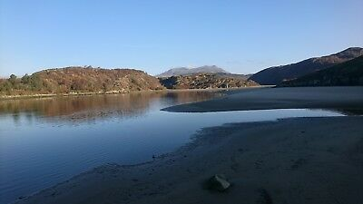 Holiday Cottage North Wales. Pet friendly 11