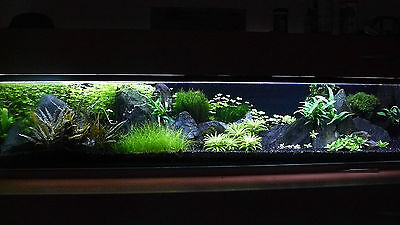 20 KG NATURAL BLACK AQUARIUM SUBSTRATE(SAND - GRAVEL 1-3mm) IDEAL FOR PLANTS 6