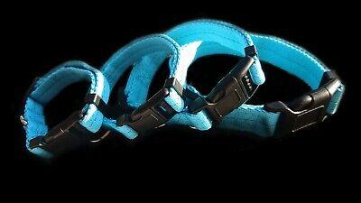 Dog Collar Nylon Adjustable Collars 4 sizes 6 colours UK Pet Accessories 10