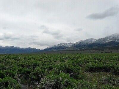 Rare 57 Acre Elko Nevada Ranch~Mountain Meadows Ranches! Cash Sale! No Reserve! 2
