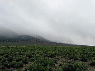 Rare 57 Acre Elko Nevada Ranch~Mountain Meadows Ranches! Cash Sale! No Reserve! 11