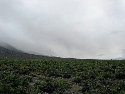 Rare 57 Acre Elko Nevada Ranch~Mountain Meadows Ranches! Cash Sale! No Reserve! 10