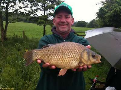 Dorset Self Catering Fishing Holiday Any 7 Days Nov-April Free Fishing 7 Waters 4