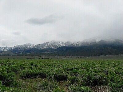 Rare 57 Acre Elko Nevada Ranch~Mountain Meadows Ranches! Cash Sale! No Reserve! 3