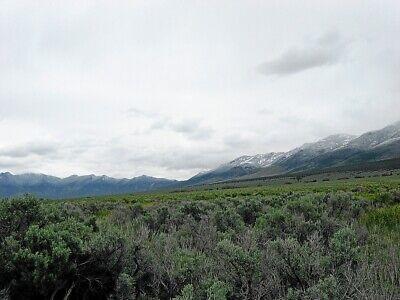Rare 57 Acre Elko Nevada Ranch~Mountain Meadows Ranches! Cash Sale! No Reserve! 8
