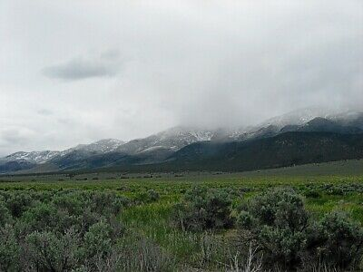 Rare 40 Acre Elko Nevada Ranch~Mountain Meadows Ranches! Cash Sale! No Reserve! 7