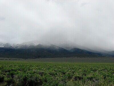 Rare 57 Acre Elko Nevada Ranch~Mountain Meadows Ranches! Cash Sale! No Reserve! 4