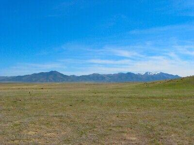 Rare 40 Acre Nevada Ranch! Churchill County! Mountain Views! No Reserve! 2