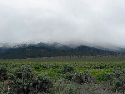 Rare 57 Acre Elko Nevada Ranch~Mountain Meadows Ranches! Cash Sale! No Reserve! 6