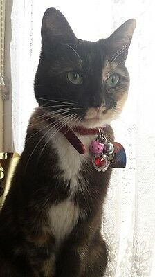 Cat Collar Bell Charms - Is your cat Pretty in Pink? Ring attached 2