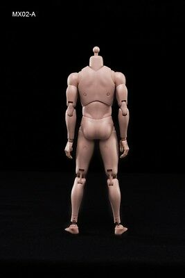 NEW 2014 Version Male Body Series with Highly Cost-Effective Edge 1/6 MX02-A 5