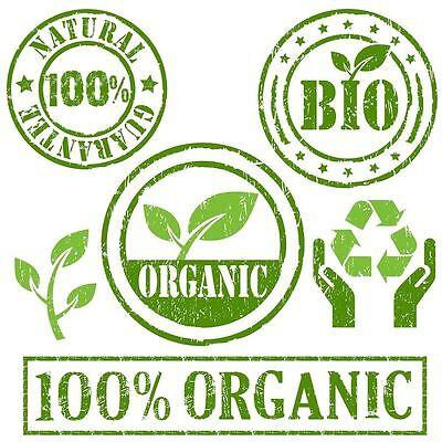 Organic Kombucha starter Scoby Tea Probiotic Decent Size 1st class Fast Postage 2