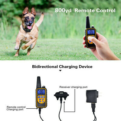 Dog Shock Collar With Remote Electric for Large  Small Pet Training 875 Yards 4