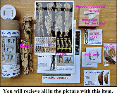 Paleolithic figurine Löwenmensch / Lion Man 10
