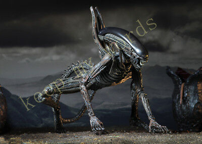"""NECA Alien Covenant Xenomorph 7"""" Scale Action Figure Collection Play toy model 7"""