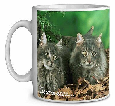 Norwegian Forest Cats /'Soulmates/' Photo Snow Globe Waterball Stocking SOUL-8GL