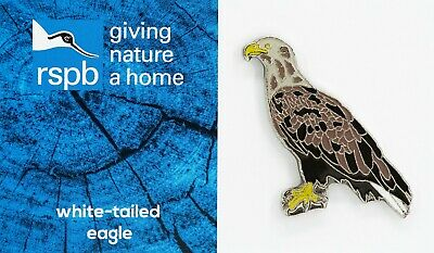 RSPB Pin Badge | white tailed eagle standing  | GNAH BLUE  | [01666] 2