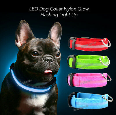 USB Rechargeable LED Dog Collar Nylon Glow Flashing Light Up Safety Pet Collars 2