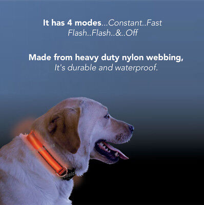 USB Rechargeable LED Dog Collar Nylon Glow Flashing Light Up Safety Pet Collars 4