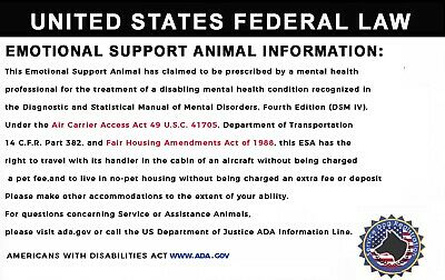 Pink Emotional Support/Service Dog Card ID Holographic Charity ADA ESA Barcode 3