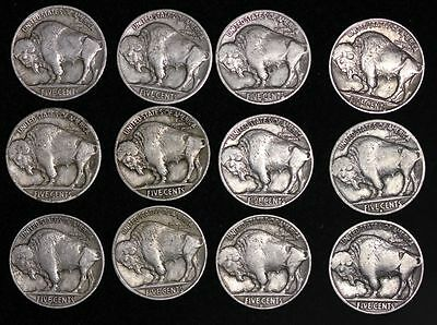 ALL 12 NICE Coins 1934 - 1938 P D S BUFFALO NICKELS 5c! Short Set! FREE P/H 2