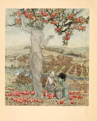 41 Vintage Arthur Rackham Illustrated Childrens Books - Dvd! Fairy Tales Fantasy 3