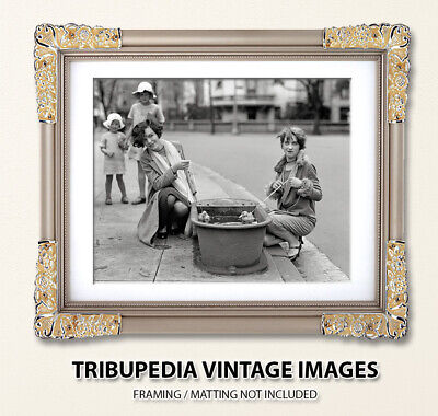 Vintage 1920s 8x10 Photo TWO BEAUTIFUL YOUNG FLAPPER Girls Playing w/ Baby Ducks 3