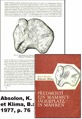 The famous Mammoth from Predmosti - cast of resin Without pedestal