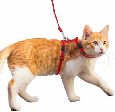 Adjustable Harness/leads/Collar For Animal Walking Cats/Kitten/Ferrets/pets UK 4
