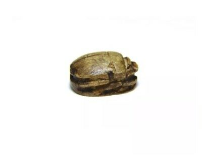 Ancient Egypt, Late period, 664 - 332 BC or earlier Scarab. 4