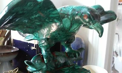 Exquisite Large Malachite Eagle 5