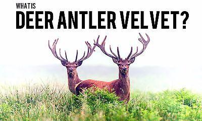 Aging Male Sex Booster Deer Antler Plus 550mg Stinging Nettle