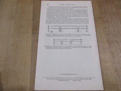 USDA Farmers Bulletin No 1870 Pruning Hardy Fruit Plants >