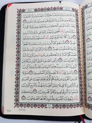 The Holy Quran Arabic Mushaf (Zipped Case) (Large - 25x18cm) (DS12) DSC 2