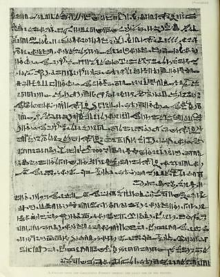 Ancient Egyptian Hieroglyphics - Papyrus Language Egypt - 145 Rare Books On Dvd! 10