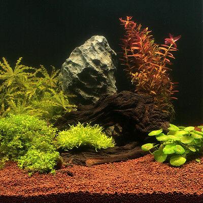 JBL Manado 5 L - Natur Bodengrund Aquarium Kies 2