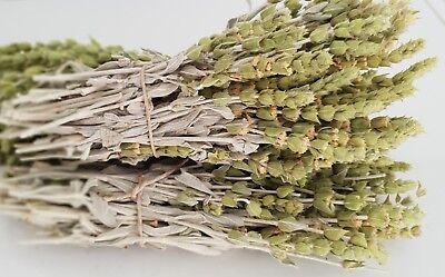 Griechischer Bergtee Sideritis Scardica Bio | 180g | Ernte 19 | Premium Qualität 5