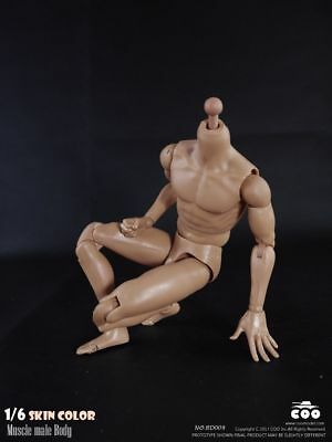 1//6 Standard Muscular male Body COOMODEL BD009 BD003 B34003 for hot toys ❶USA❶