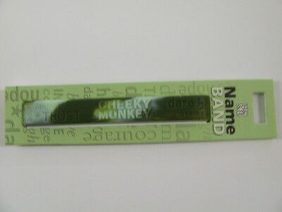 Name Band S T V W Z customised gift Stacey Taylor Zoe..