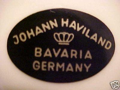 "Johann Haviland Rhineland Oval Serving Platter 14 3/4"""