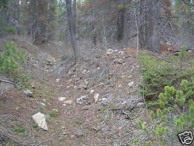 2 lbs Montana gold  nugget panning paydirt Bullion mine